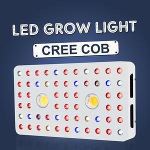 Image 1 - Phlizon 1000W Wholesale grow led light for plants vegetation promotion full spectrum cob high pressure lamp