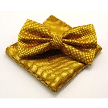 luxury Bright Silk Bow Ties 2 pcs Set 5