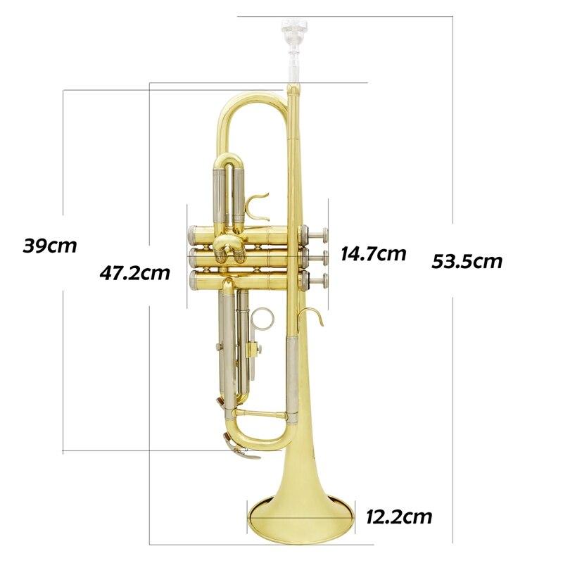 Slade Trompet Bb B Flat Duurzaam Messing Trompet Beginner Muziekinstrument met Mondstuk Handschoenen en Prachtige Gig Bag - 5
