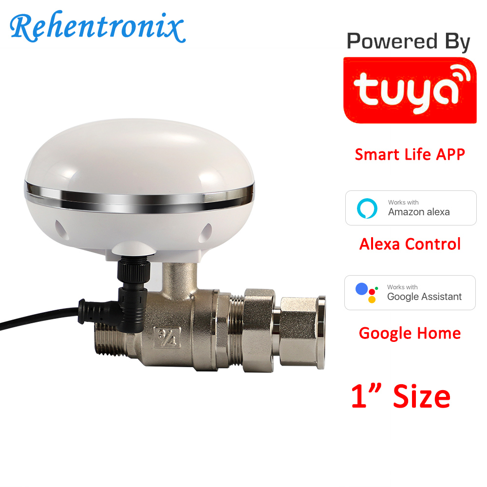1 Inch Pipe Size Home Garden Watering Tuya Smart Life Water Valve Alexa Google Remote Control Kitchen Gas Valve Smart Life