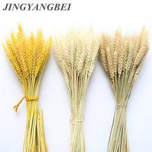 Ramo de flores secas de trigo para decoración, juego de flores naturales deshidratadas para fiesta de boda, libro de manualidades artesanales, 100 unidades