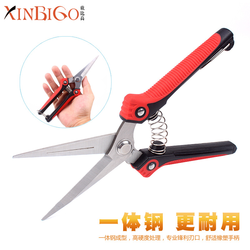 Profession Stainless Steel Pointed-Toe Orchard Fruit Picking Scissors Picking Fruit Grape Fruits Xi Guo Jian Knife Pruning Garde