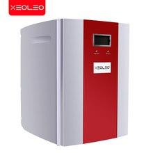 Xeoleo 7l geladeira cosmética portátil caixa de armazenamento de baixa temperatura freezer gelo livre geladeira armário cosmético