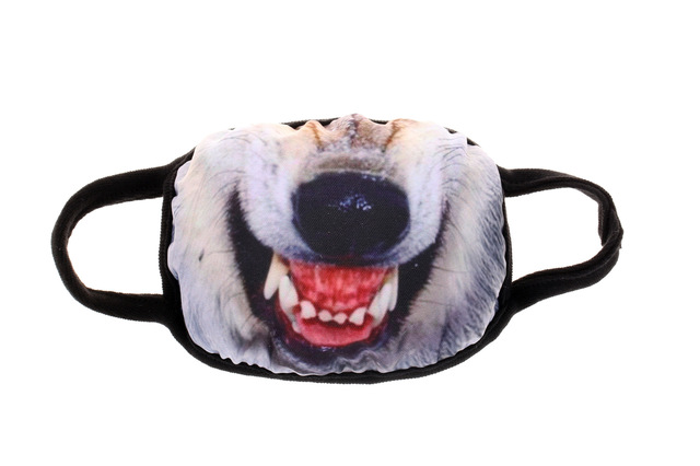 Mouth Mask Cotton Cute PM2.5 Anti Haze Cartoon Dust Mask Nose Filter Windproof Face Muffle Bacteria Flu Fabric Cloth Respirator 3