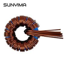 SUNYIMA 45uh 160A induttanza bobina magnetica induttore Sendust per frequenza di potenza sinusoidale Inverter 1000 4000W