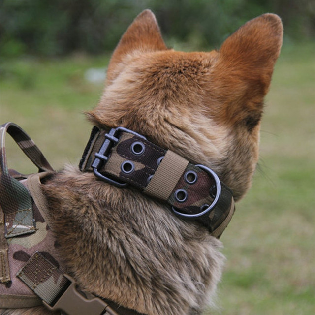 Nylon Tactical Military Dog Collar with Metal Buckle