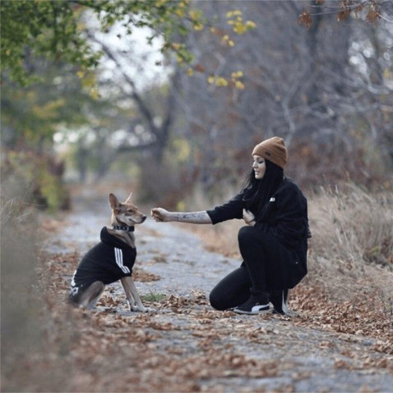 Товары для домашних животных, одежда для собак, пальто, куртка, толстовка, свитер, одежда для собак, хлопковая одежда для собак, спортивный стиль, одежда для собак-3