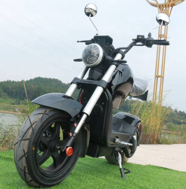 EEC/COC Approved 1500w Powerful M3 Motorcycle Electric Citycoco Scooters Adult EU STOCK 60V 20AH Electric Motorcycle 55KM 3