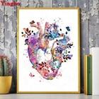 Heart Human Organs M...
