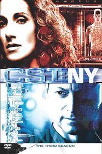 犯罪现场调查:纽约第三季[24集全]