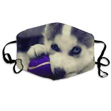 Puppy Husky Unisex Mask Indoor Outdoor Cycling Camping Travel Windproof Sun Anti Dust Mask Mouth with Adjustable Ear Loops(China)