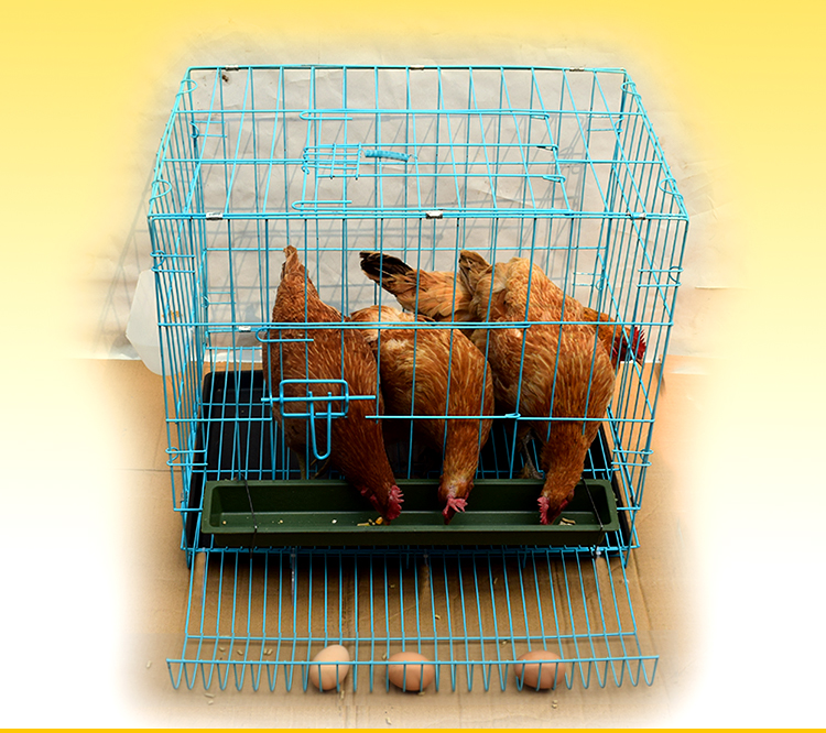 Chicken Cage Home Large Farm Poultry Egg Cage Automatic Egg Chicken Cage Field Chicken Cage Transport Chicken House Chicken Cage
