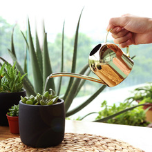 500ML Stainless Steel Long Mouth Watering Pot Green Plant Platinum Rose Gold Watering Can Small Watering Kettle Gardening Tools