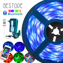 Cinta de luz LED RGB Bluetooth, cinta de luz Led SMD 2835 DC12V, luz LED impermeable, cinta Flexible de diodo de 5m 10m con control remoto Bluetooth(China)