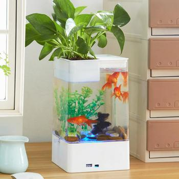 Mini Acrylic Betta Fish Tank