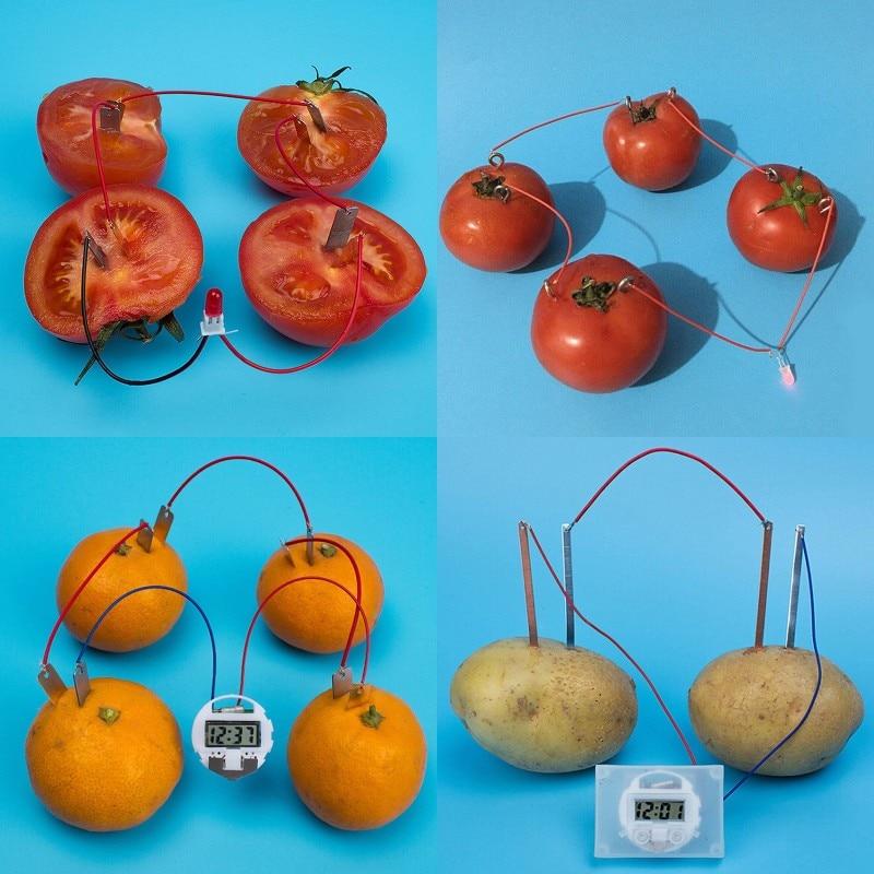 Bio Energy Science Kit поставка картофельных фруктов электрические эксперименты для малышей детей студентов обучающая научная развивающая игрушка