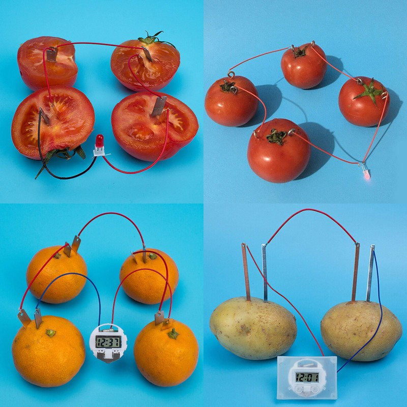 Bio Energy Science Kit Potato Fruit Supply Electricity Experiments Kids Children Student Learining Science Educational Toy