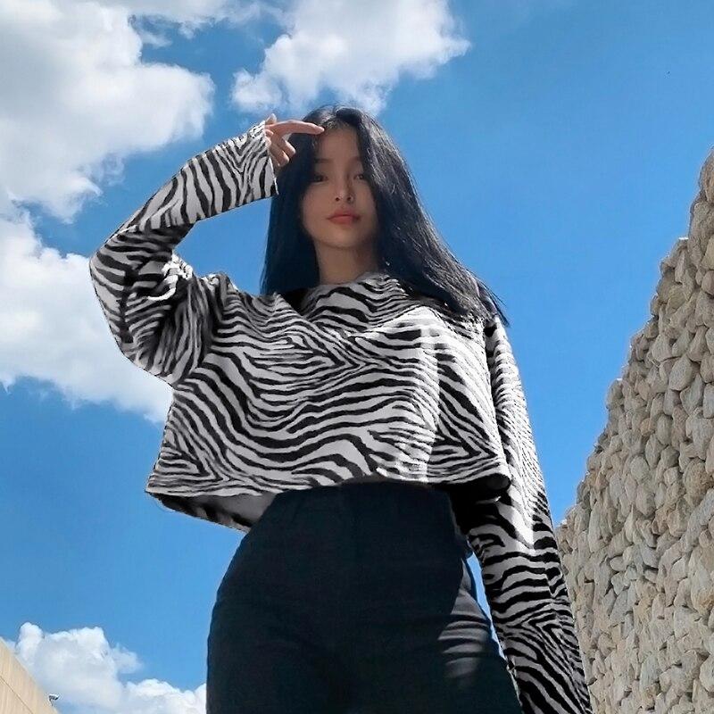 Zebra Sweatshirt (15)