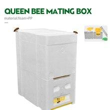 Улей улейная коробка 2 слоя урожая королева полинация пчеловодства для пчеловодства вязки копуляции королева резерв инструмент пчеловода