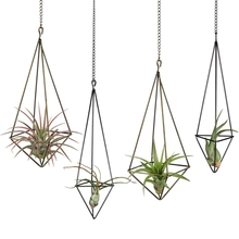 Hanging Air Plant Holder- 4 Pack, 2 Sizes Metal Air Plant Rack Tillandsia Hanger Display Himmeli Planter with Chains
