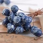 50pcs/bag Blueberry ...