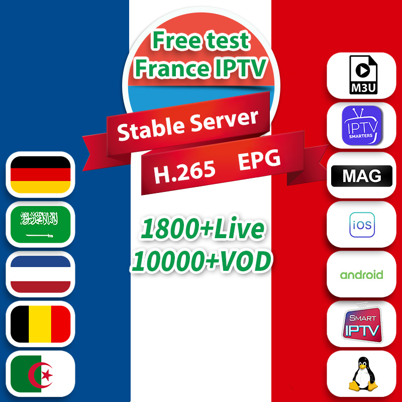1 Year IPTV French Belgium Netherlands Algeria Arabic IPTV Subscription Code For Smart Tv M3u Android IP TV France Dutch Germany