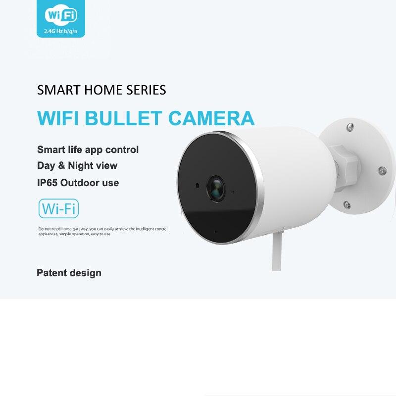 Tuya samrt extérieur IP66 étanche WIFI caméra CCTV sans fil caméra HD 1080P réseau Vision nocturne caméra IP travail avec écho Alexa