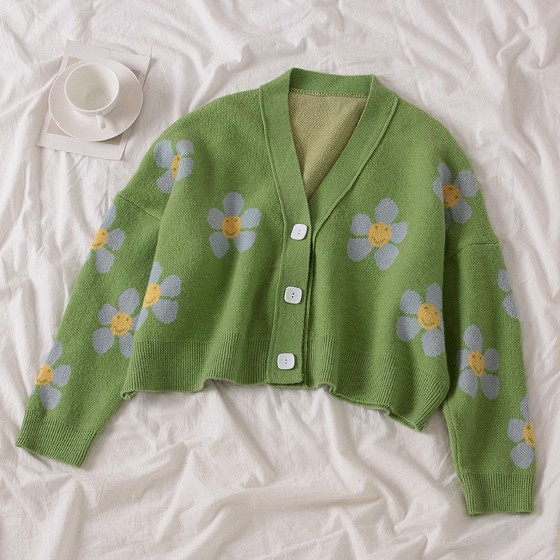 College style flower knitted jacket loose cardigan sweater women's v-neck loose style thickened snake print short casual jacket