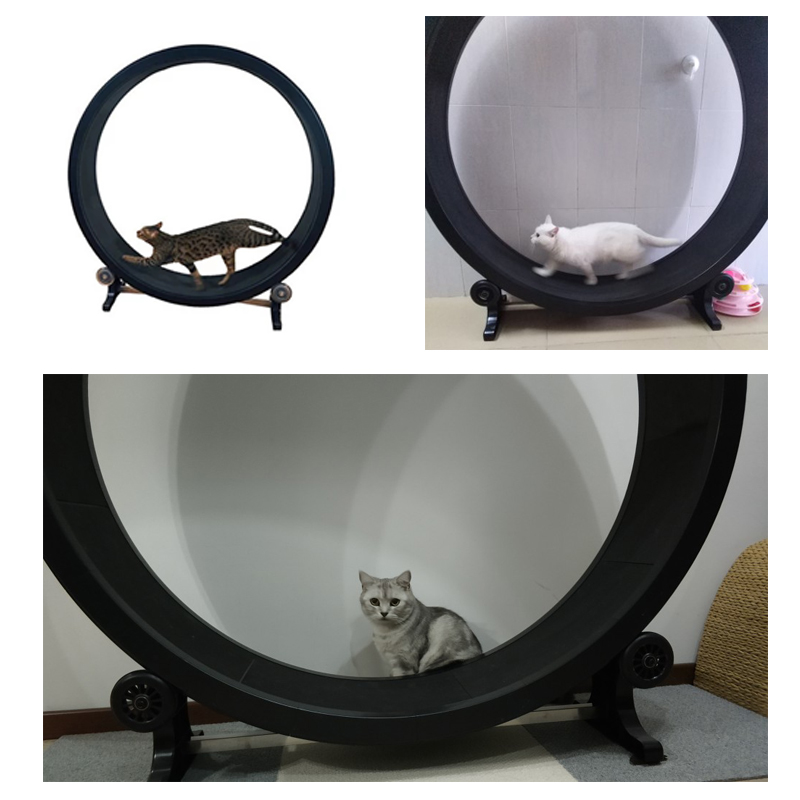 Interesting products cat treadmill interactive pet toy accessories behavior training sports automatic wheel cat scratch board