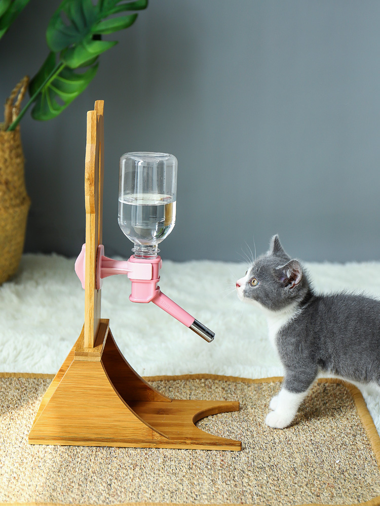 Cats Feeding & Watering Accessories Cat Automatic Cycle Drinking Water Dispenser  My Pet World Store