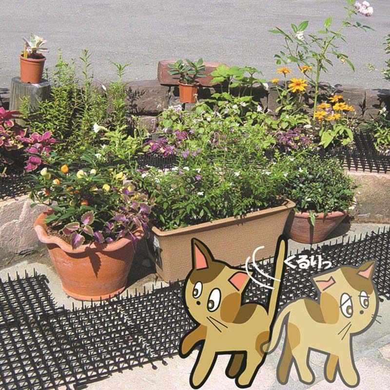Vườn Mèo Scat Thảm Chống Cát Châm Chích Dải Giữ Mèo Đi An Toàn Tắc Kê Nhựa 2 M Vườn Chống mèo Và Gây Hại Châm Chích Dải RT99