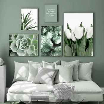 Biały tulipan zielona orchidea aloe monstera sztuka z motywem roślinnym płótno malarstwo nordic plakaty i druki zdjęcia ścienny na wystrój salonu tanie i dobre opinie CN (pochodzenie) Wydruki na płótnie Pojedyncze PŁÓTNO Olej Flower bez ramki abstrakcyjne XKDHD-641 Malowanie natryskowe
