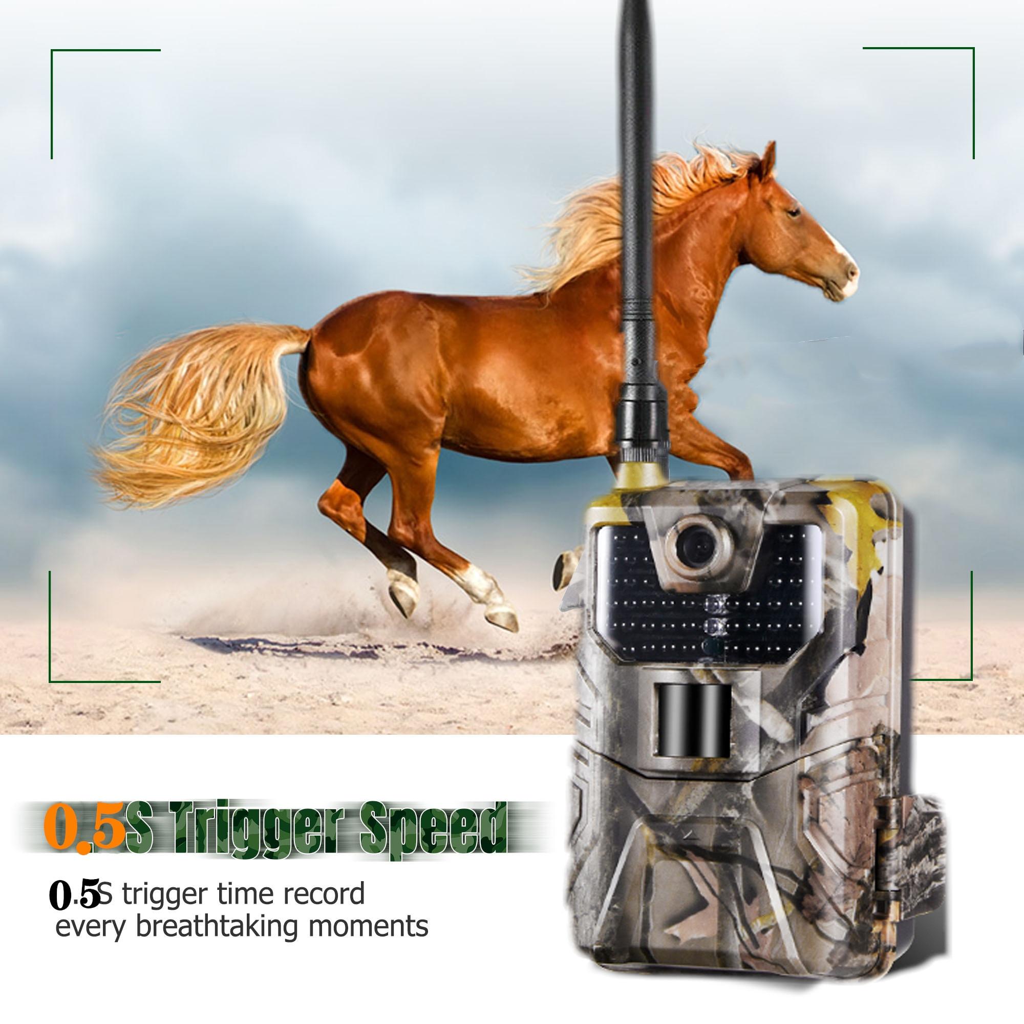 20MP 1080P 2G SMS MMS SMTP Wildlife Trail Kamera Foto Fallen Nachtsicht E mail Cellular Jagd outdoor Kamera überwachung - 3