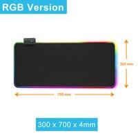 RGB 300x700mm