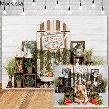 Mocsick אביב פסחא צילום תפאורות גזר באני תפאורה בציר עץ דלת תא צילום רקע תמונה סטודיו