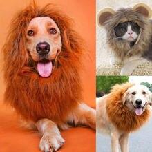 Лидер продаж 2020 наряд для домашних животных кошек собак парик