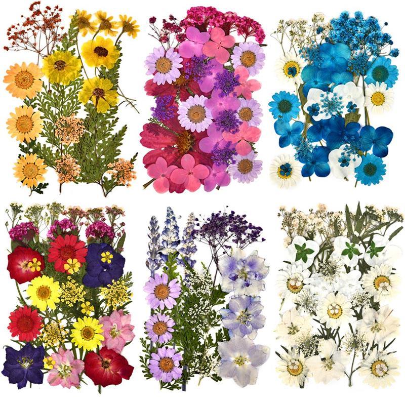 1 упаковка, сушеные цветы, УФ смола, натуральные Цветочные наклейки, сухая красота, наклейка для DIY, эпоксидная смола, наполнение, украшение д...