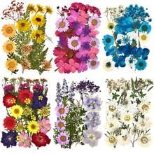 Pegatinas de flores naturales de resina UV para decoración de joyas, adhesivos de belleza seca para Resina epoxi DIY, 1 paquete