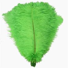 10 шт/лот зеленое яблоко страусиное перо для поделок 15 70 см/6