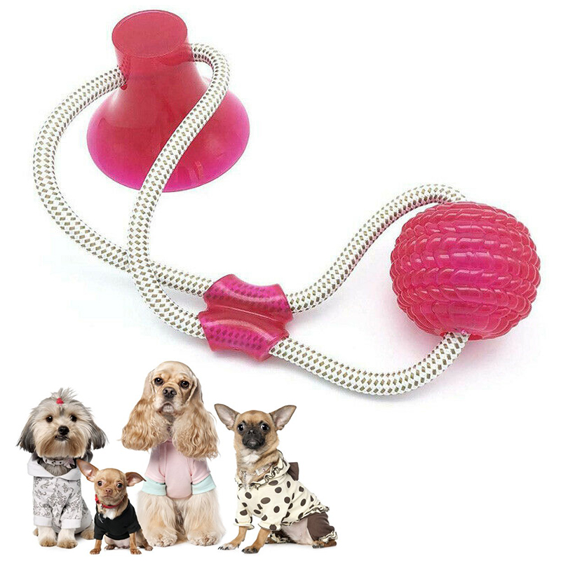 Pet Toys with Suction Cup Dog Ball Dog Toothbrush Rubber Dog Toy Puppy Toys Dog Toys for Large Small Dogs Popular Toys Petshop 10
