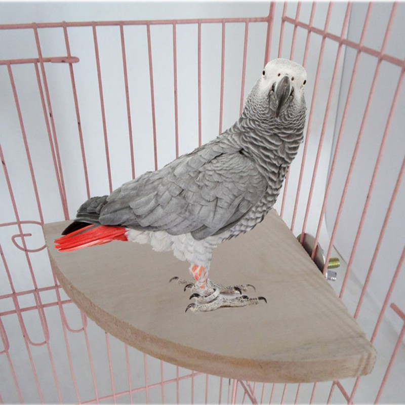 2018 Pet Toy Bird Parrot Wood Platform Stand Rack Toy Hamster Branch Perches For Bird Cage Toys Pet Supplies Toy For Parrots