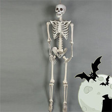 Plastic Human Bones Skeleton Horror Halloween  Props Animal Crow Decoration
