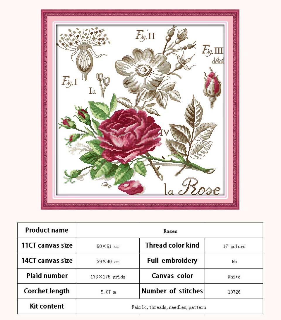 H526-玫瑰