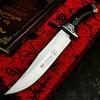 PEGASI  U.S.A(DEHONG )SA48 hunting straight blade rescue knife camping straight blade Mirror light  tactical knife 1