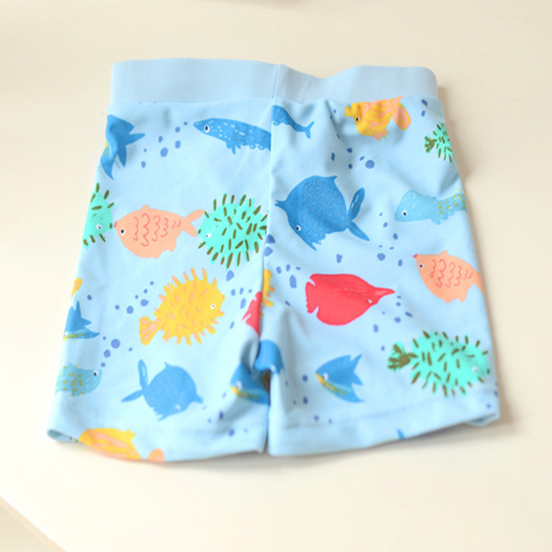 CHILDREN'S Swimming Trunks Cute Boy Students Infants Small Children Swimming Cartoon Light Blue Bottom Rainbowfish AussieBum