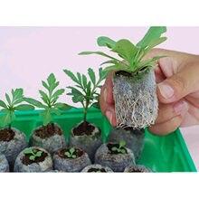 Bloc de sol nutritif 30mm, granulés de Peat Jiffy, bouchons de démarrage pour palette de grains, graine POE, palette de semis, 40 pièces
