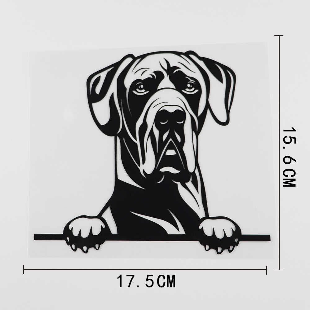 Funny GREAT DANE Vinyl Car Van Decal Sticker Pet Animal Lover