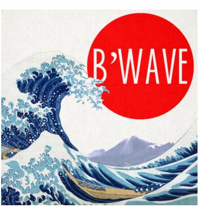B'Wave DELUXE By Max Maven Presented By Nick Locapo- MAGIC TRICKS