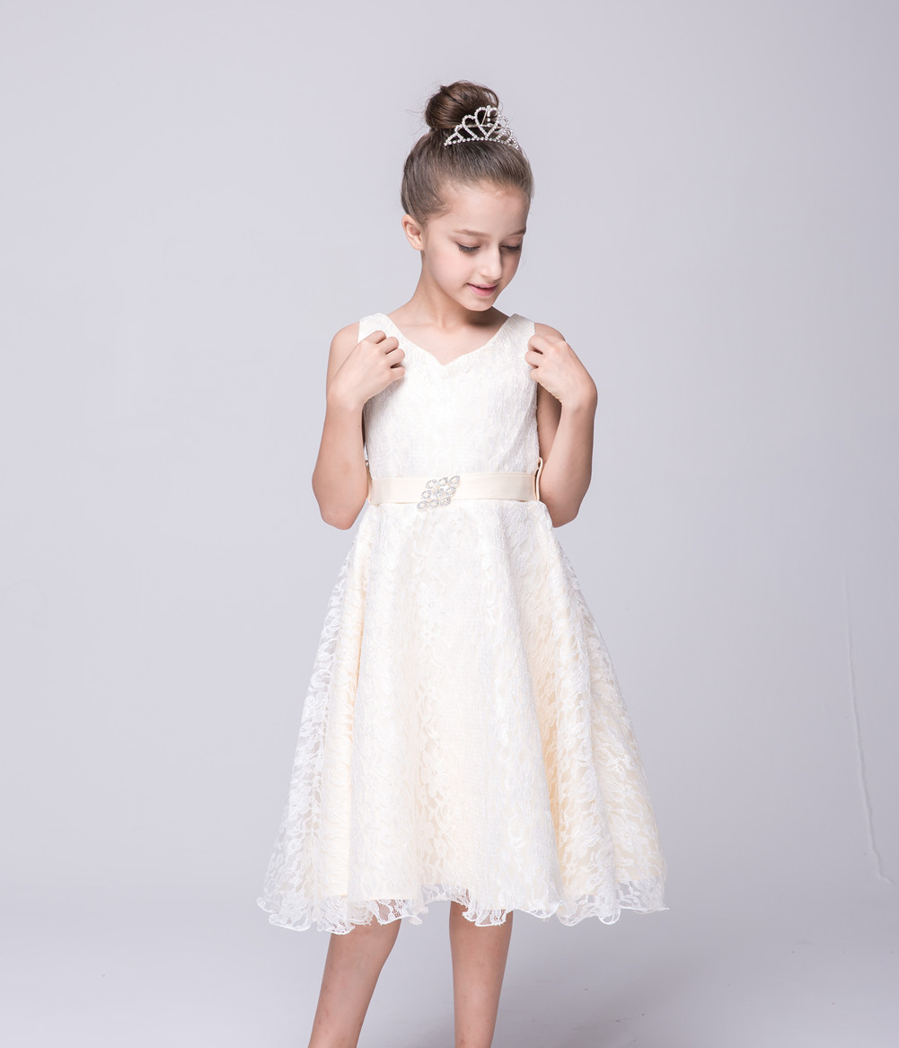 Dress Party Gown Lace