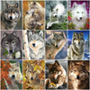 AZQSD DIY Animal Paint By Number Canvas Painting Kits Unframe Pictures By Numbers Wolf Picture For Living Room Home Decoration